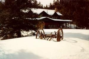 wagonsnow